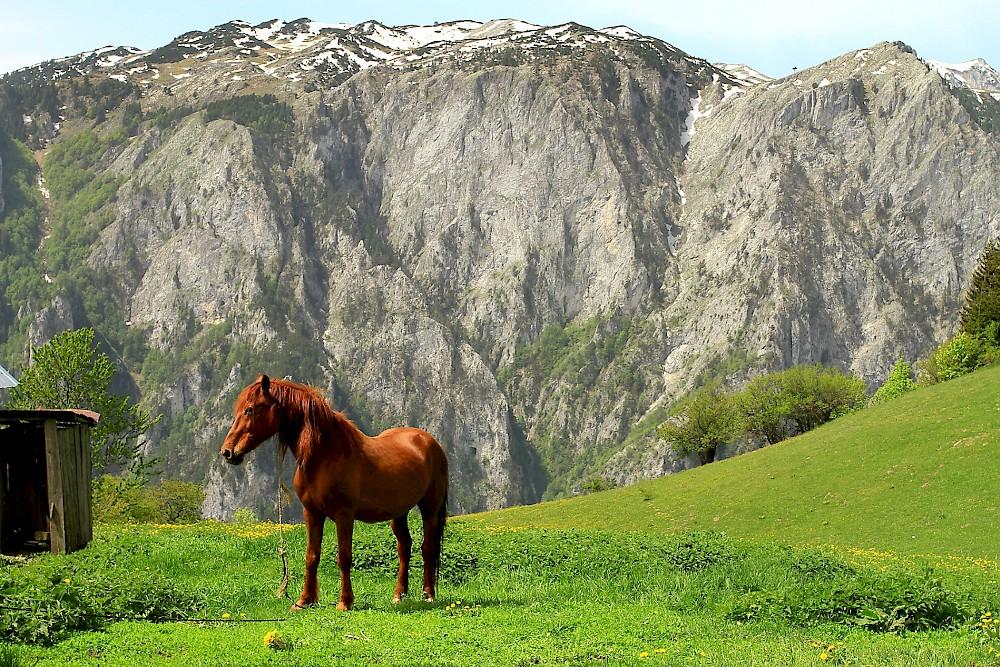 Rugova Valley - Kosovo Peje